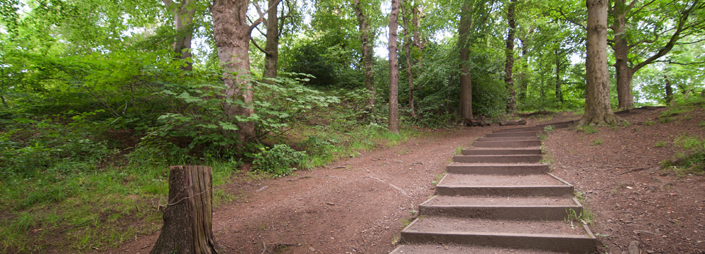 Craiglockhart Woods and Nature Trail