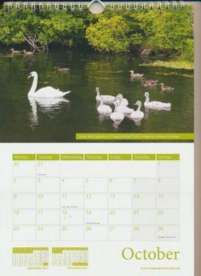 oct-2017-calendar-comp
